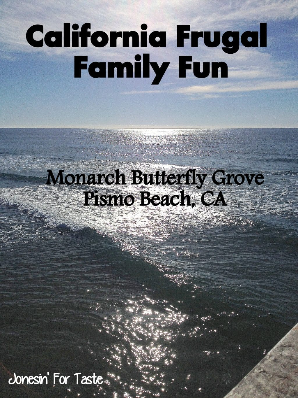 Having fun in California doesn't have to be expensive- visit Pismo Beach and see tens of thousands of Monarch Butterflies!
