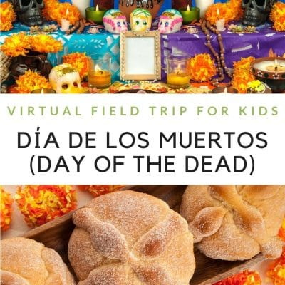 a collage of Day of the Dead images with a text graphic in the middle
