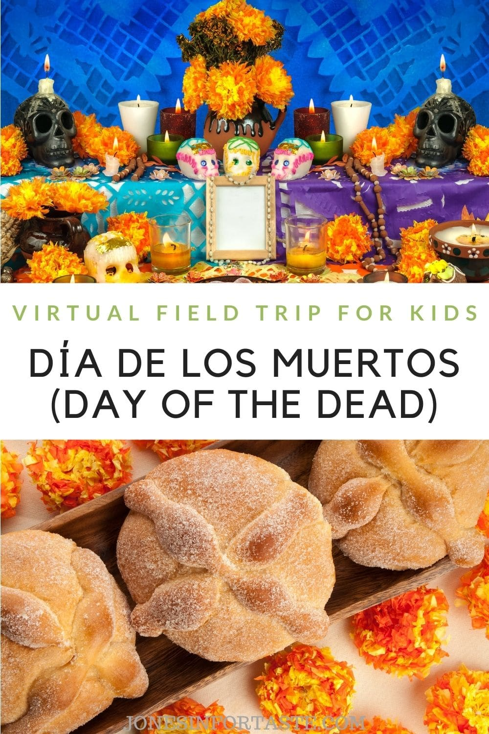 Day of the Dead Virtual Field Trip For Kids