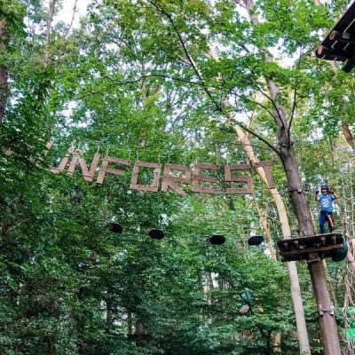 Fun Forest Rotterdam Review