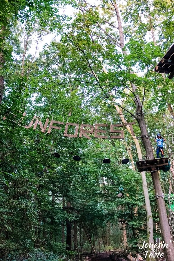 a boy stands on a platform in the trees next to giant hanging letters that spell FunForest