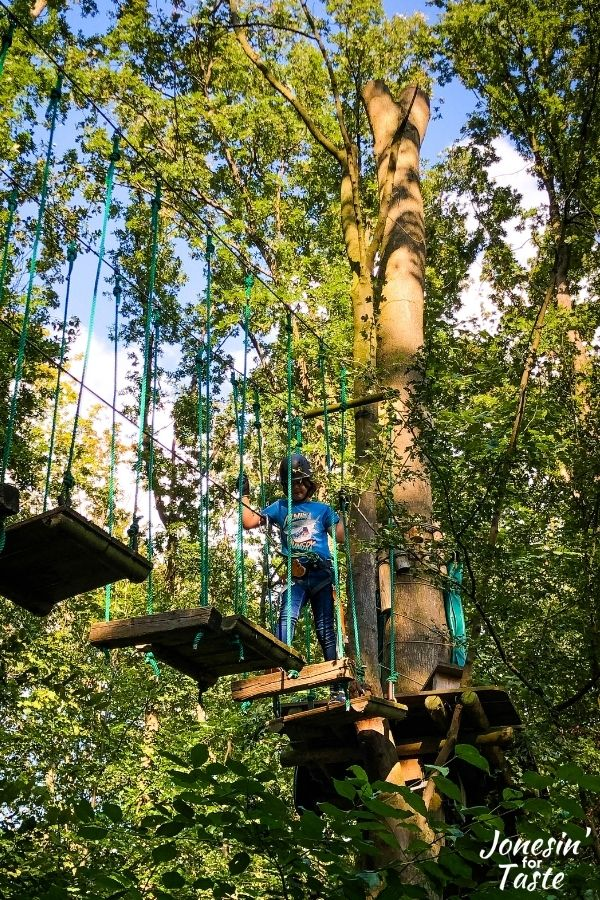 a boy navigates swinging platforms in the trees